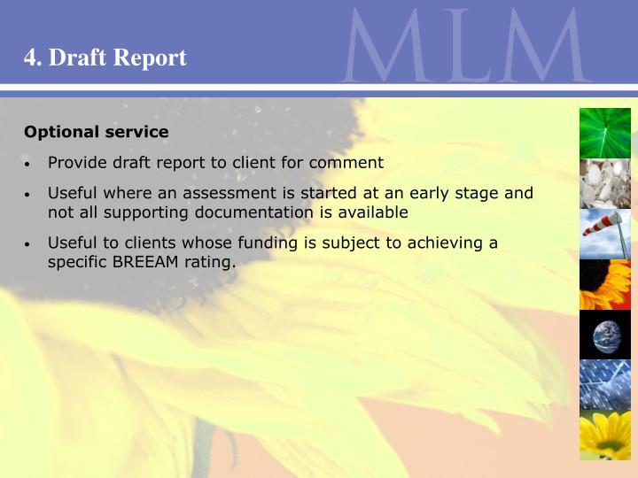 4. Draft Report