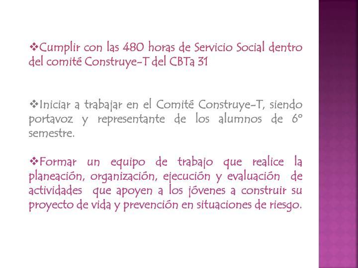 Cumplir con las 480 horas de Servicio Social dentro del comité Construye-T del