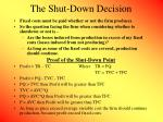 the shut down decision