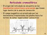 reticulado cromosf rico33