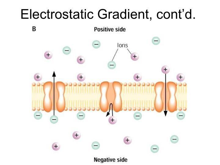 Electrostatic Gradient, cont'd.