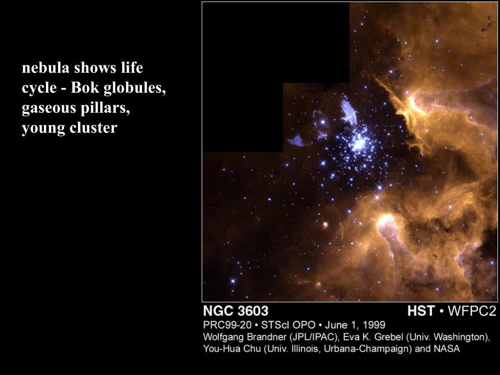 nebula shows life cycle - Bok globules, gaseous pillars, young cluster