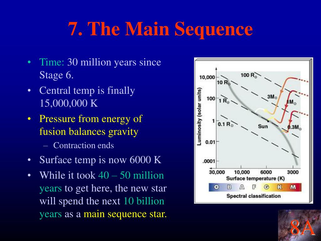7. The Main Sequence