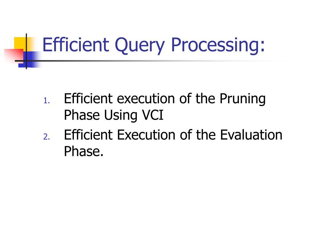 Efficient Query Processing: