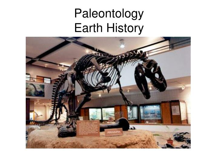 paleontology earth history n.