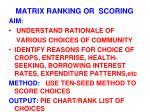 matrix ranking or scoring