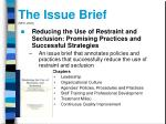 the issue brief neti 2003
