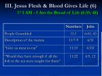 iii jesus flesh blood gives life 6 1 st i am i am the bread of life 6 35 4849