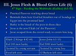 iii jesus flesh blood gives life 6 4 th sign feeding the multitude galilee 6 1 15