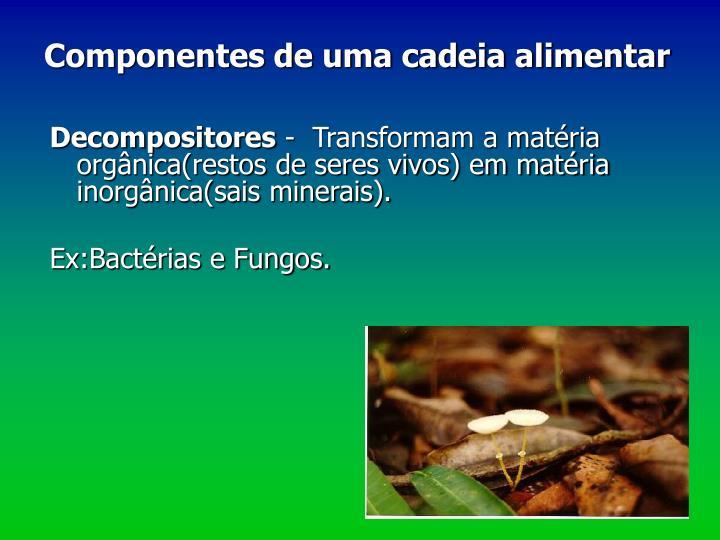 Decompositores
