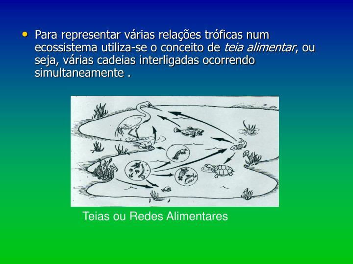Para representar várias relações tróficas num  ecossistema utiliza-se o conceito de