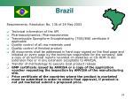 brazil29