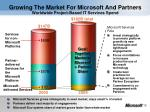 growing the market for microsoft and partners worldwide project based it services spend