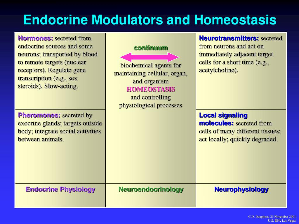 Endocrine Modulators and Homeostasis