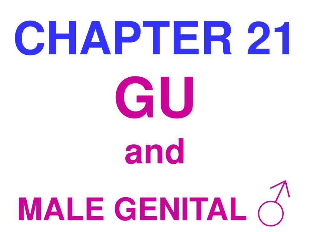 chapter 21 l.