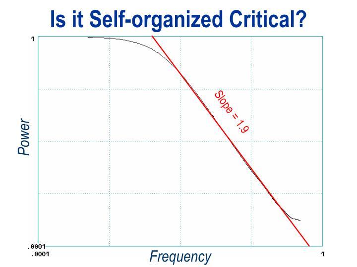 Is it Self-organized Critical?