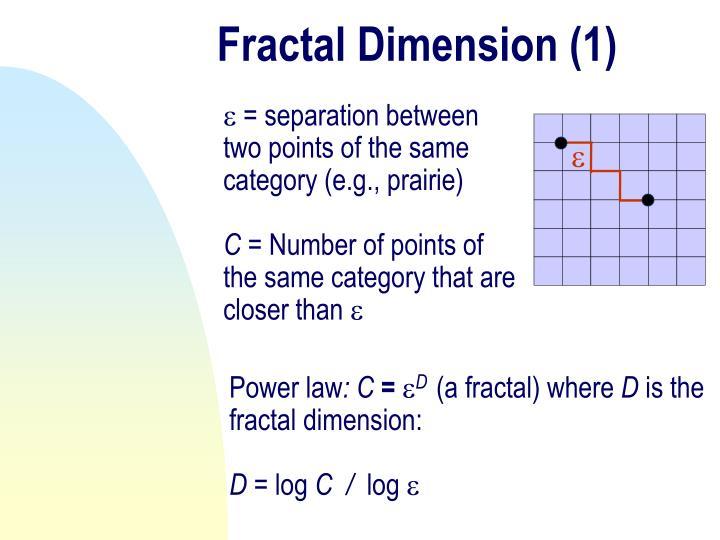 Fractal Dimension (1)