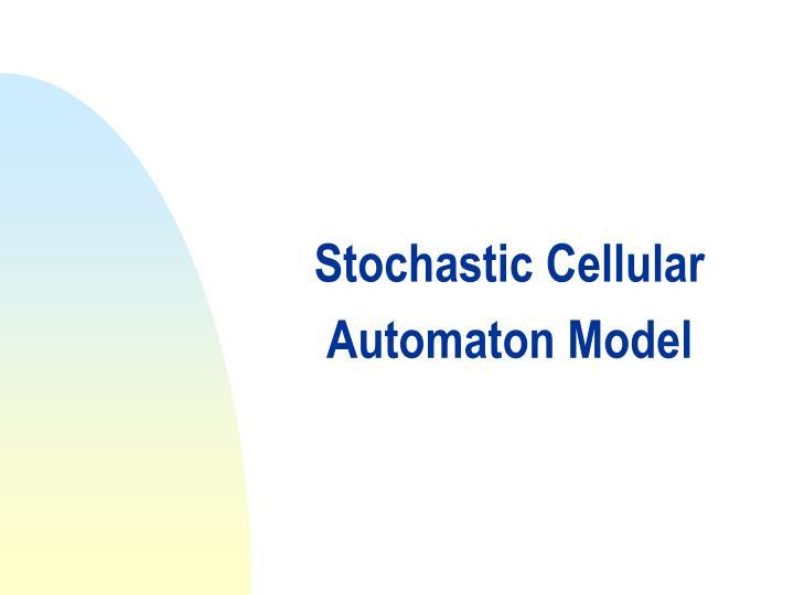 Stochastic Cellular Automaton Model