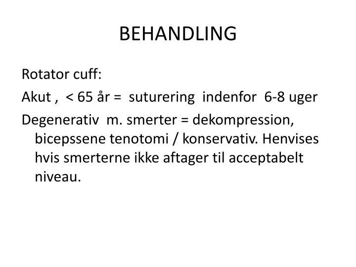 BEHANDLING