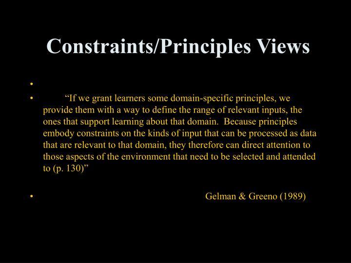 Constraints/Principles Views