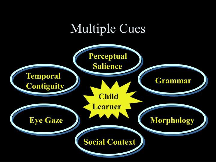 Multiple Cues