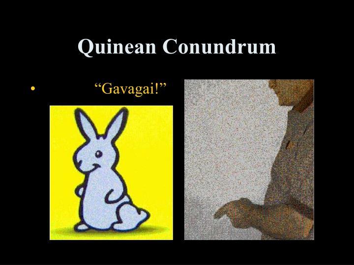 Quinean Conundrum