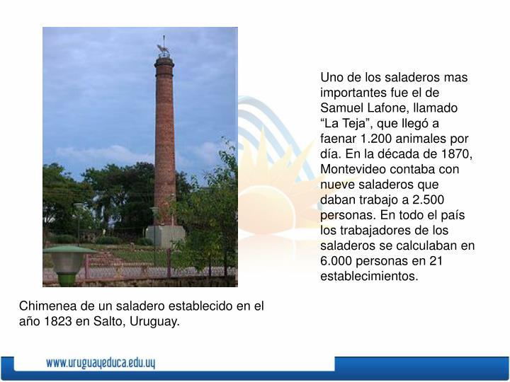 """Uno de los saladeros mas importantes fue el de Samuel Lafone, llamado """"La Teja"""", que llegó a faenar 1.200 animales por día. En la década de 1870, Montevideo contaba con nueve saladeros que daban trabajo a 2.500 personas. En todo el país los trabajadores de los saladeros se calculaban en 6.000 personas en 21 establecimientos."""