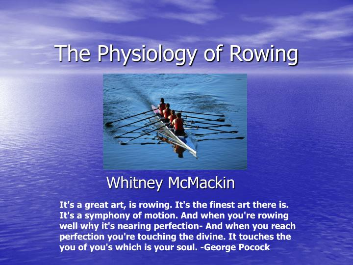 PPT - The Physiology of Rowing PowerPoint Presentation - ID