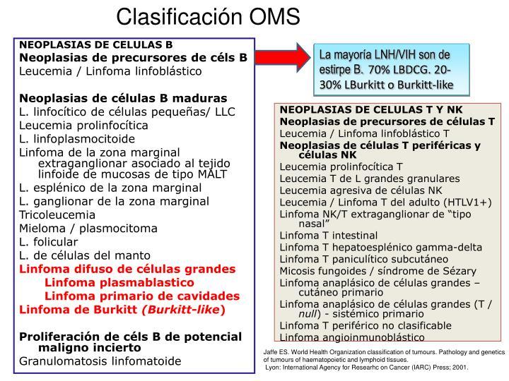 Clasificación OMS