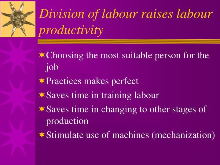 Division of labour raises labour productivity