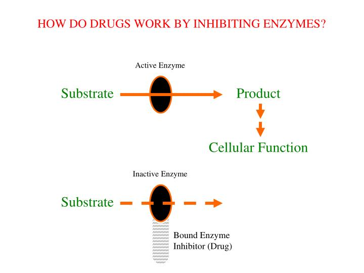 HOW DO DRUGS WORK BY INHIBITING ENZYMES?