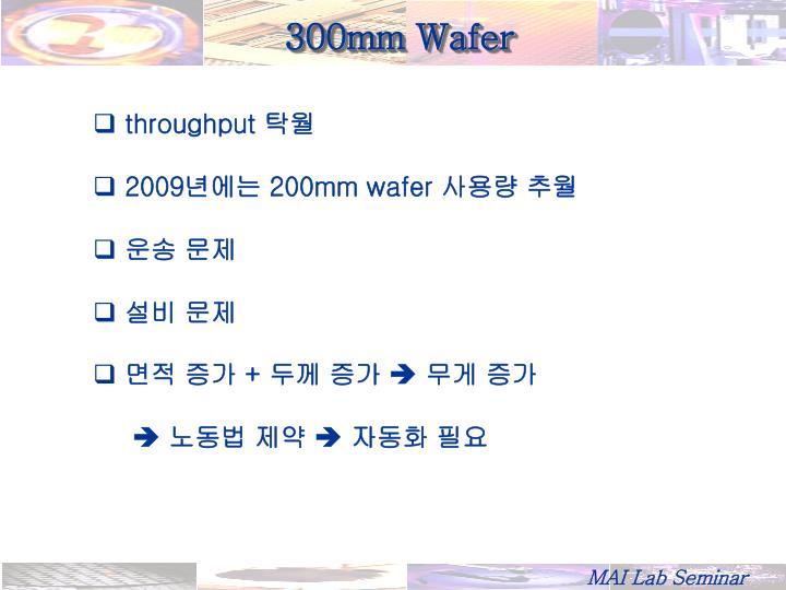 300mm Wafer