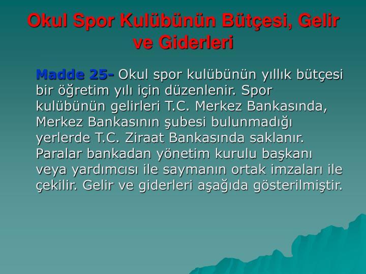 Okul Spor Kulübünün Bütçesi, Gelir ve Giderleri