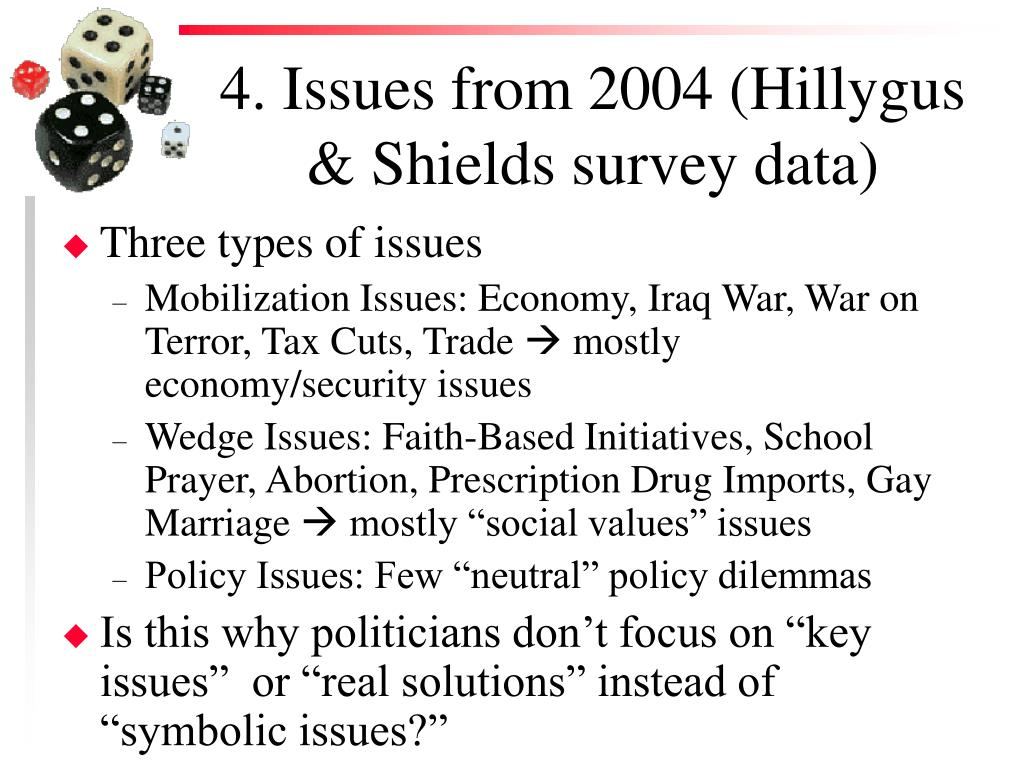 4. Issues from 2004 (Hillygus & Shields survey data)