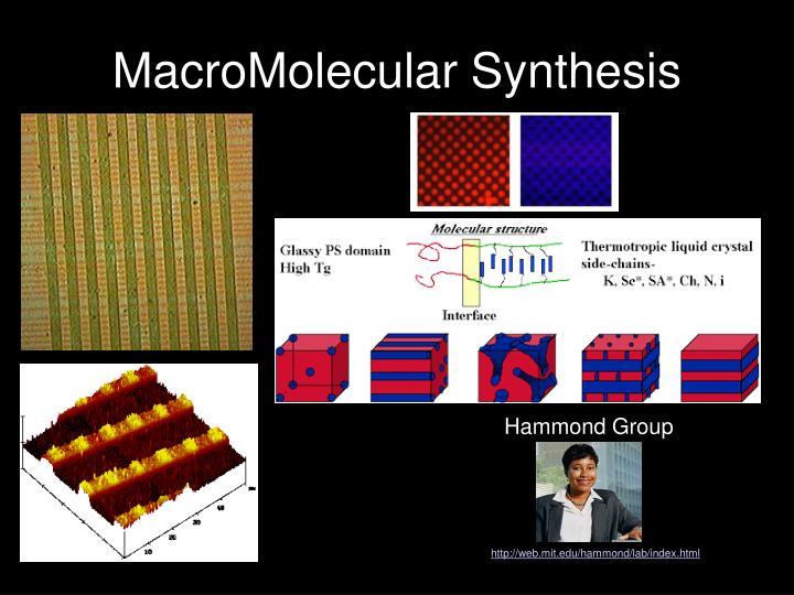 MacroMolecular Synthesis
