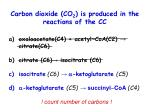 carbon dioxide co 2 is produced in the reactions of the cc1