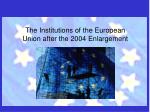 the institutions of the european union after the 2004 enlargement