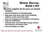winter storms build a kit8