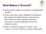 what makes a terrorist13