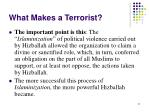 what makes a terrorist21