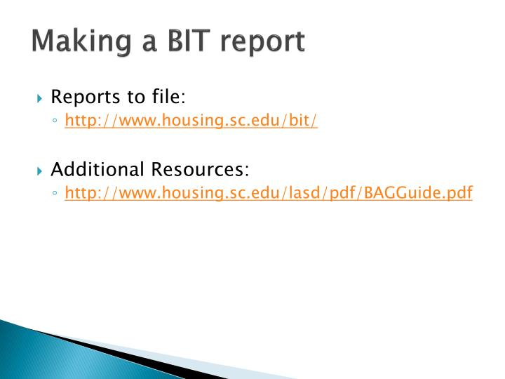 Making a BIT report