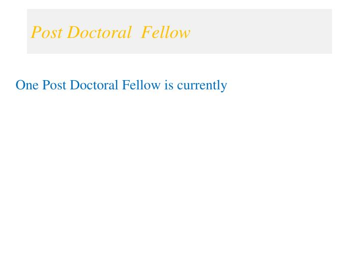 Post Doctoral  Fellow