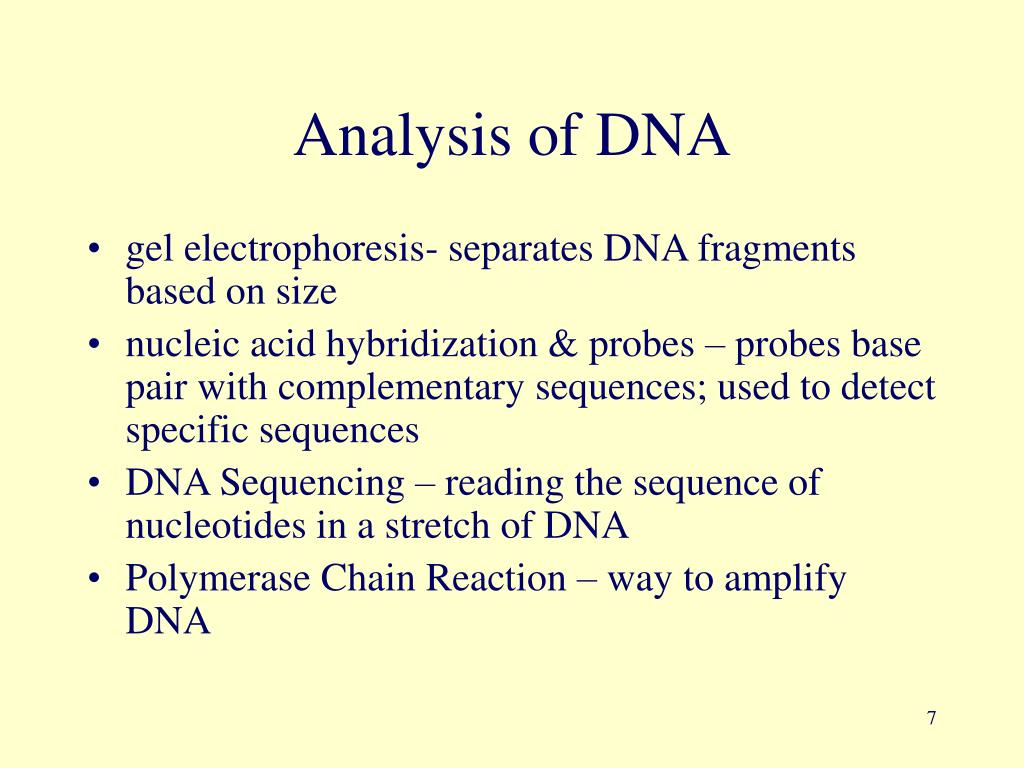 Analysis of DNA