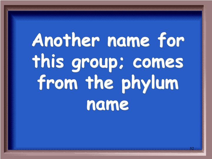 Another name for this group; comes from the phylum name