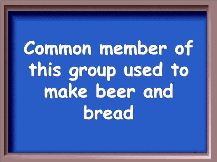Common member of this group used to make beer and bread