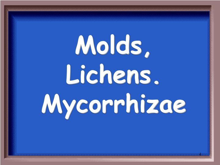 Molds, Lichens. Mycorrhizae