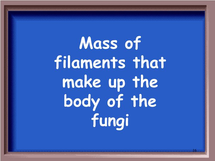 Mass of filaments that make up the body of the fungi