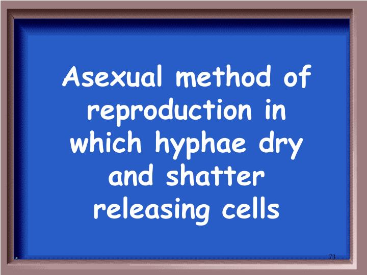 Asexual method of reproduction in which hyphae dry and shatter releasing cells