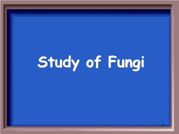 Study of Fungi