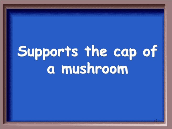 Supports the cap of a mushroom